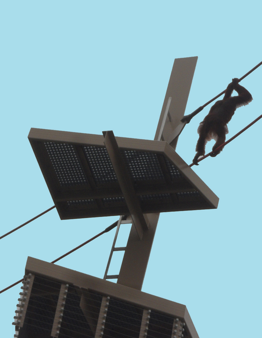 Rocky, a young orangutang swings through the air at the  Simon Skjodt International Orangutan Center in Indianapolis