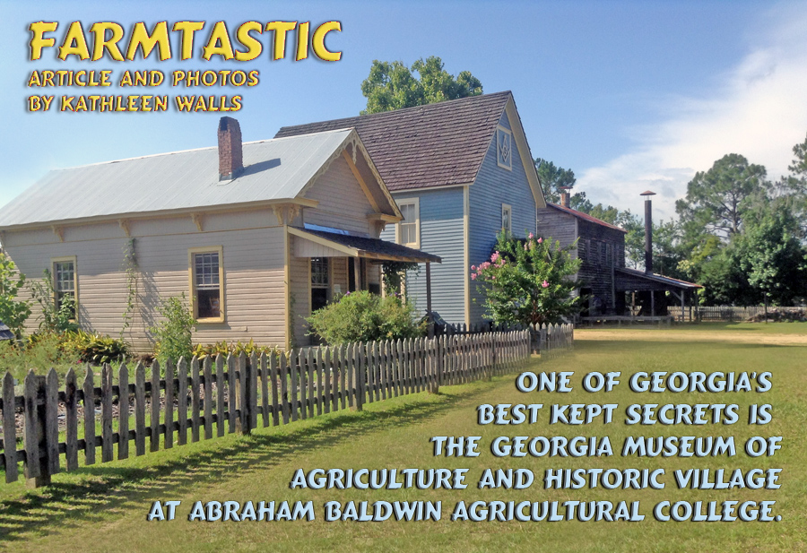 Georgia Agrirama also known as Georgia Museum of Agriculture's historic villlage ll and blacksmith shop