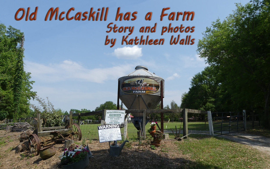 Old McCaskill Farm water tank with name on it
