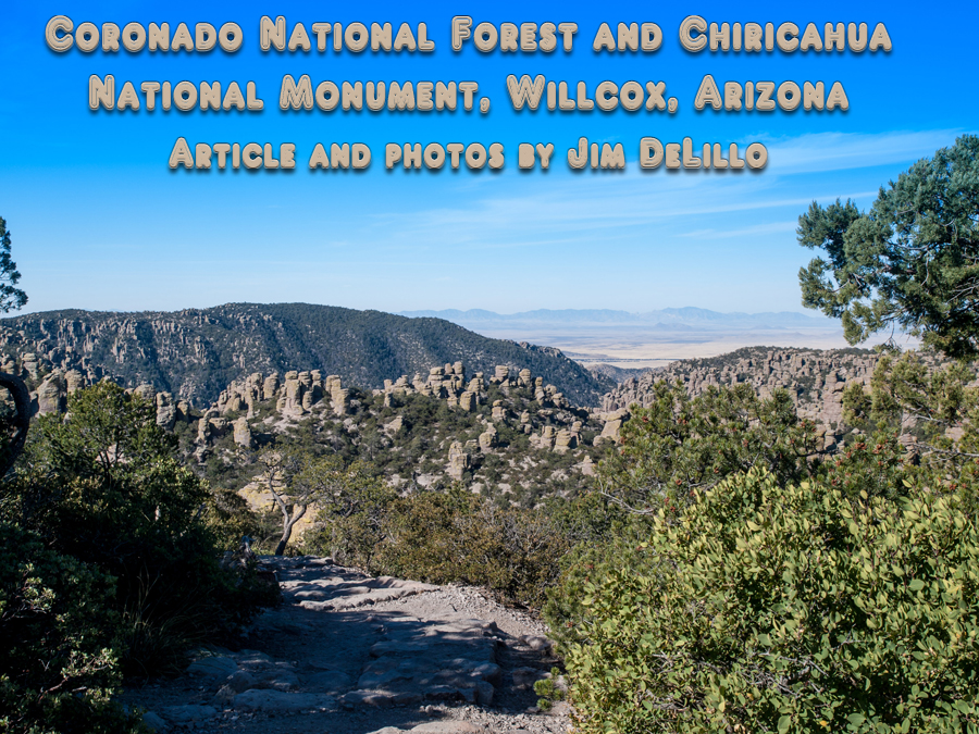 Willcox Arizona mountains with title of article