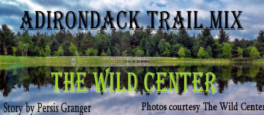 Title picture for the Wild Center in the Adirondacks