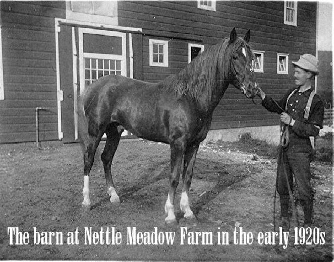 Nettle Meadow barn in 1920 with horse and trainer in front