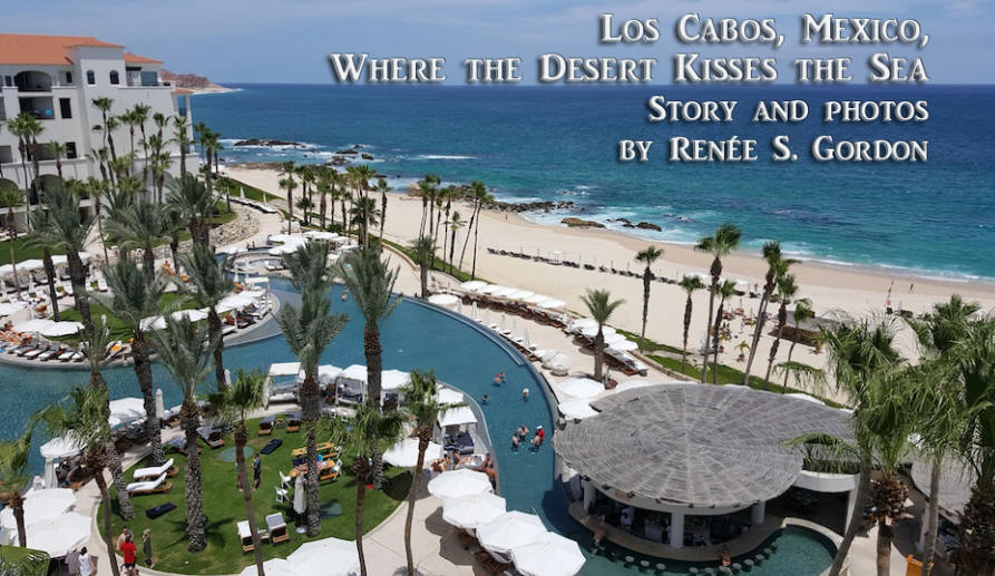 Sea and resort at Los Cabos, Mexico used as header