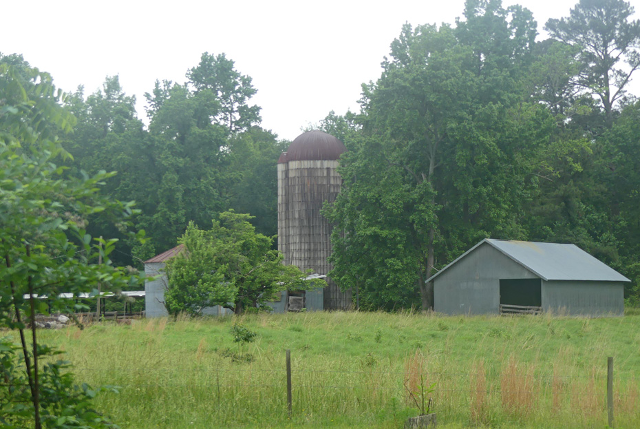 silo and outbuildings at Carvers Creek State Park