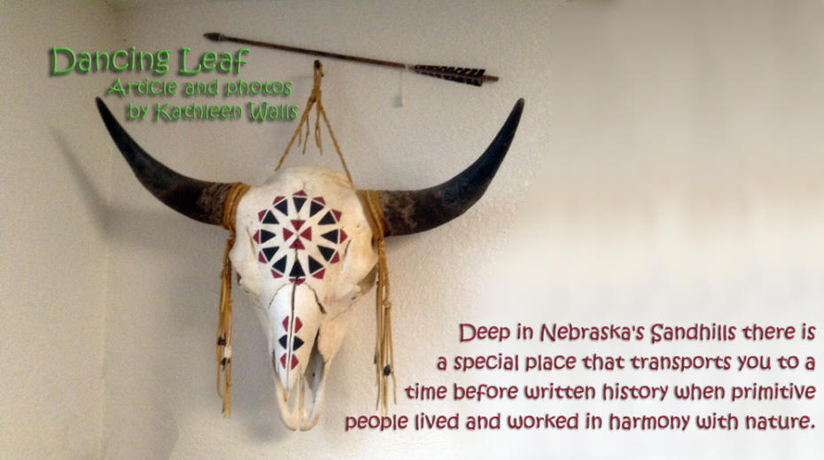 ceremonial buffalo skull at Dancing Leaf Cultural Learning Center in Nebrasks's Sandhills