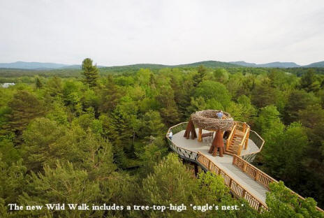Eagles nest viewint platform at Wild Center in Adirondacks