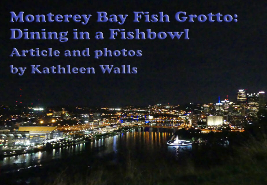 View of Pittsburgh at night from Monterey Bay Fish Grotto on Mount Washingotn