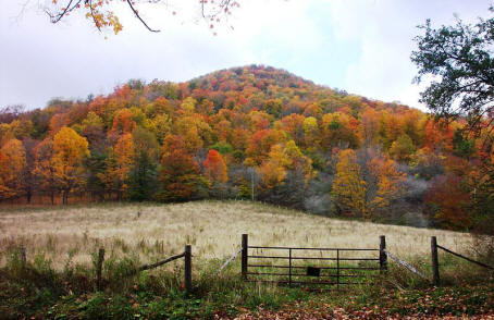 fall foliage in the appalachian mountains in West Virginia