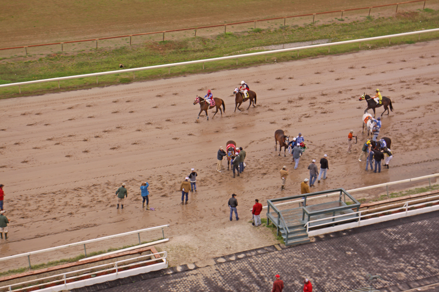 racetrack at Harrah's Louisiana Downs in Bossier City