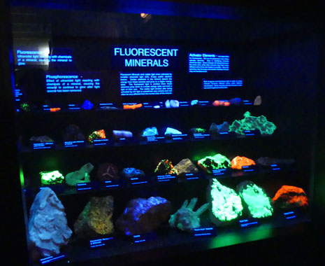 Floresent mineral display black light at Joplin's Mineral and History Museum