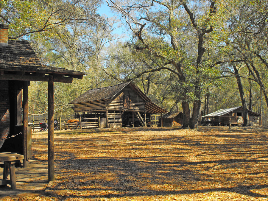 Someof the Big Bend Farm buildings at Tallahassee Museum