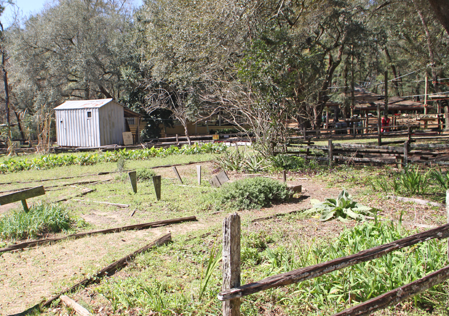 Garden at Big bend Farm at Tallahassee Museum