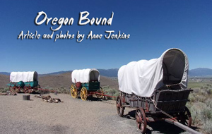 Three covered wagons on Oregon Trail