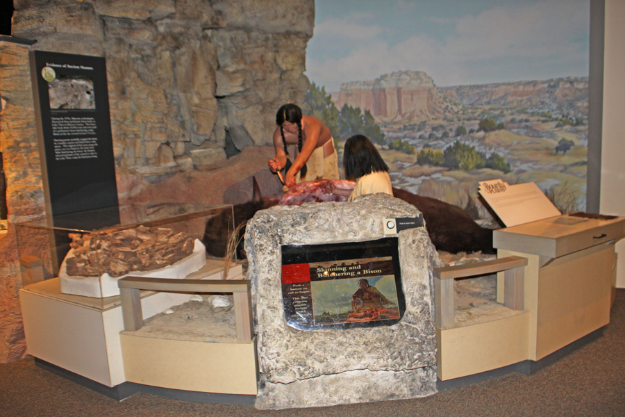 Comanche people skinning a buffalo exhibit at Panhandle Plains Historic Museum