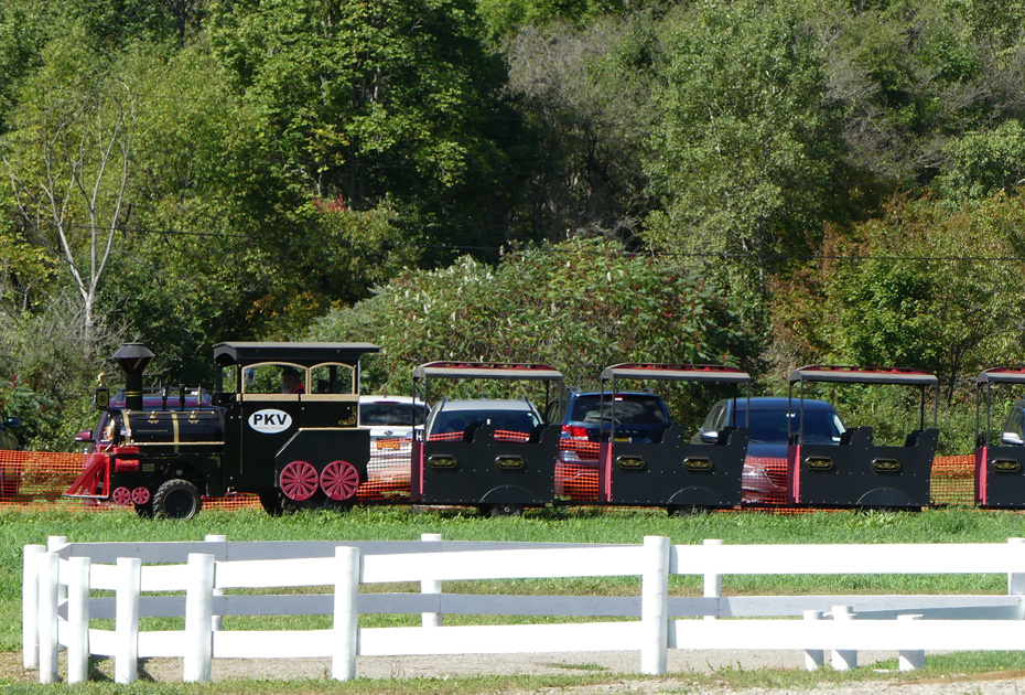 train  at pumpkinville
