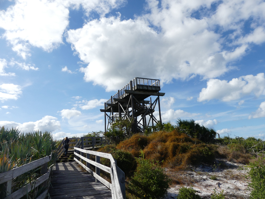 observation tower at Jonathan Dickerson state park