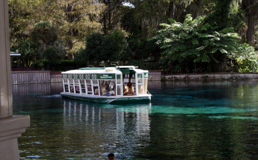 Glass bottomed boat at Silver Springs State Park near Ocala, Flofids