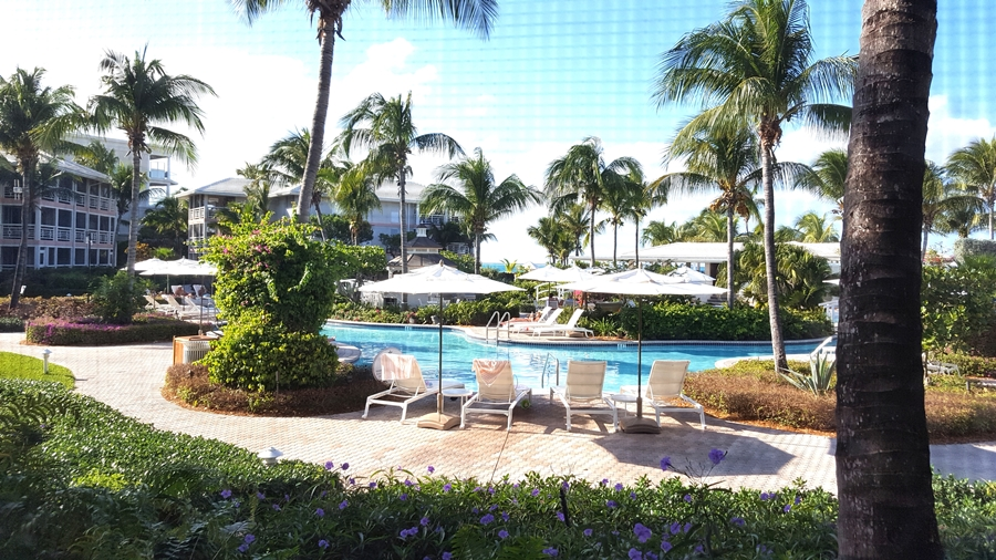 Renee's International Route --Turks and Caicos, Paradise
