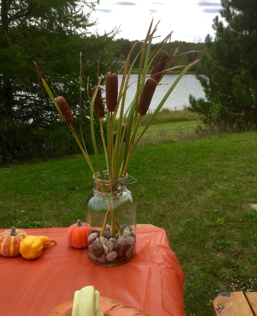 table with cattails and pumpkins overlooking a lake in wisconsin Northwoods