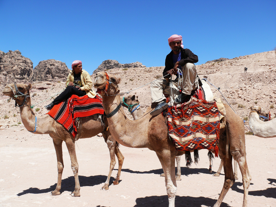 two camel owners and camels waiting tourists at Mount Sinai