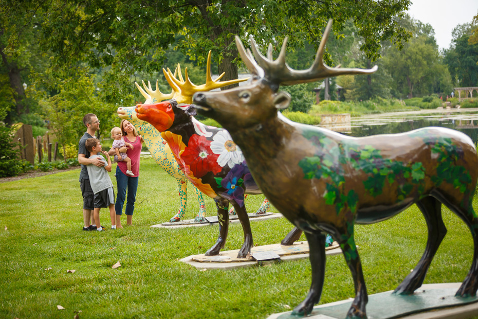 Elk sculptures in Elkhart County