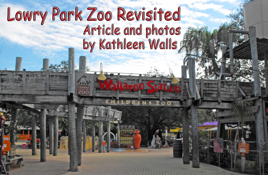Header                               showing Wallaroo Station and title Lowery                               Park Zoo Revisited
