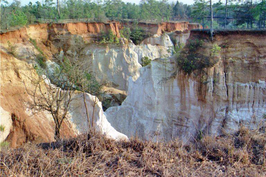Providence Canyon in Western Georgia near Lumpkin